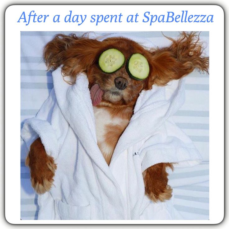 After a day spent at #SpaBellezza   #SpaDay #Relax  #FeelTheDifference