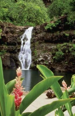 Swimming in waterfalls- site lists the various waterfalls you can hike to on Oahu