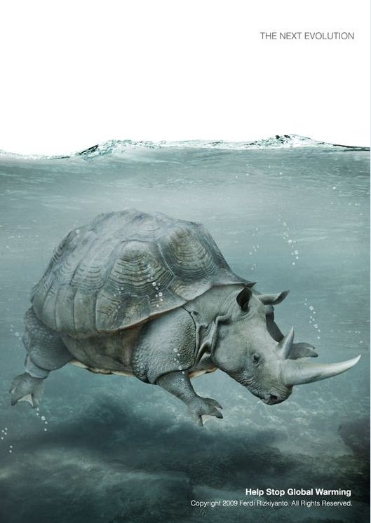 amphibian rhino.