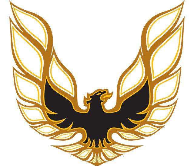 картинки на клан с птицей изображение можно