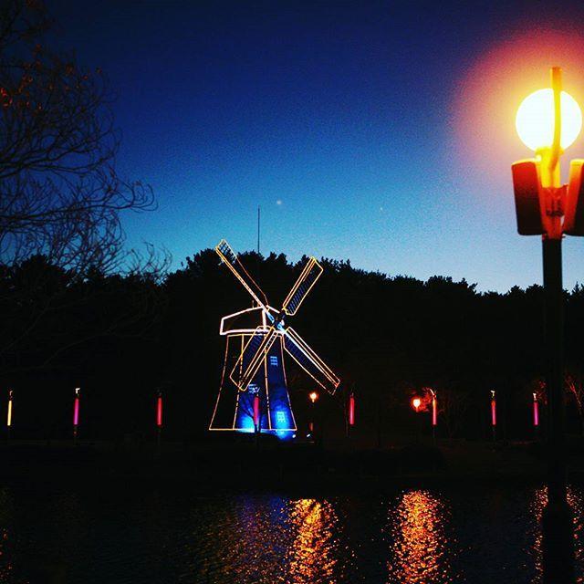 Instagram【namhyuk.k】さんの写真をピンしています。 《#울산 #울산대공원 #저녁 #야경  #가로등 #ulsan #풍차 #사진 #蔚山 #night #windmill  #park #photo #pic #공원  #風車 #公園 #夜 #写真  #夜景 #호수》