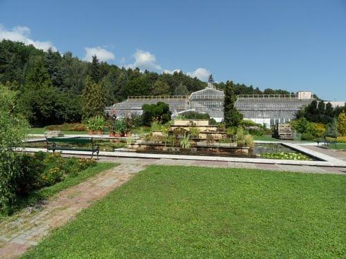 Košice - Botanická záhrada 5