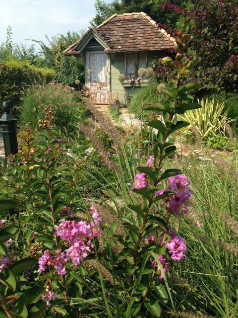 Négy Évszak kert Júliusban - Kertészet Siófok (4)