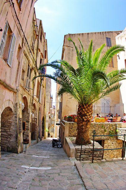 Rue devant l'église Sainte-Marie Majeur, Bonifacio, Corsica, France