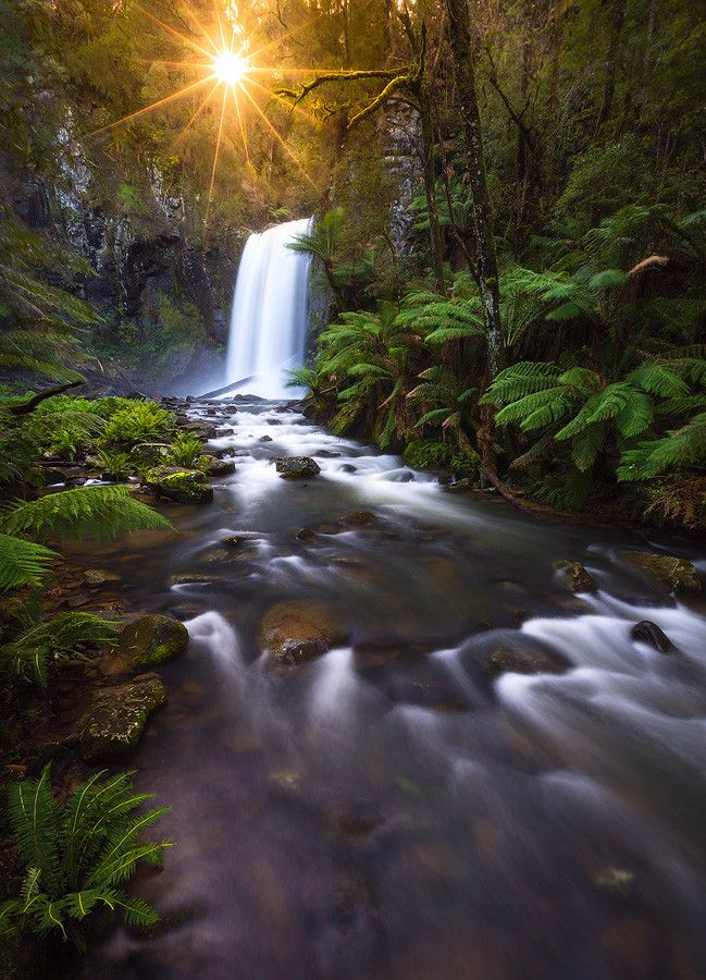 Hopetoun Falls Great Otway National Park Victoria Ray Of Hope II By Dylan