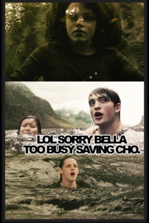 Hahaha Cedric: Nerd, Cedric Diggori, Hilary, Save Cho, Funnies, Twilight Meme, Things, Harry Pottertwilight, Business Save