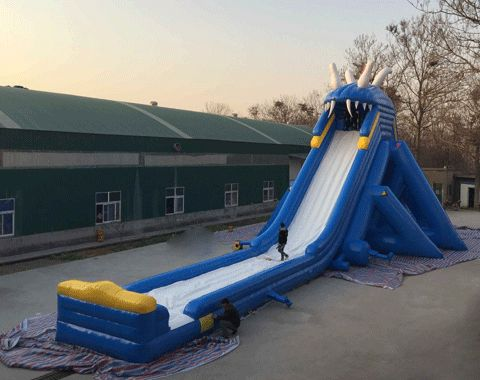 inflatable commercial water slides for sale