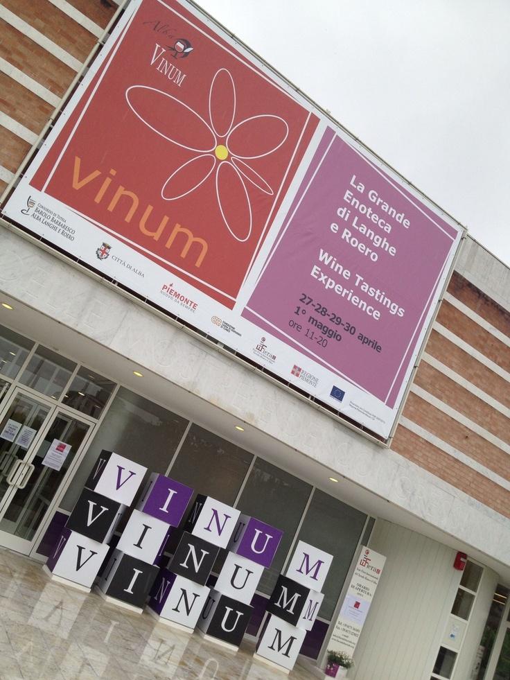 Vinum Alba 2013