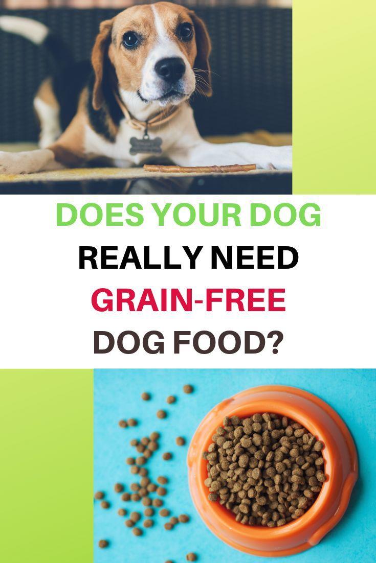 Grain Free Dog Food Linked To Heart Disease Grain Free Dog Food
