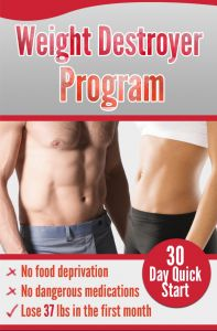 Weight Destroyer Program This Set The Weight Loss Niche On Fire