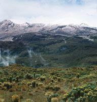 Páramo de la cordillera Central, al fondo se pueden apreciar las altas cumbres del volcán nevado del Ruiz.