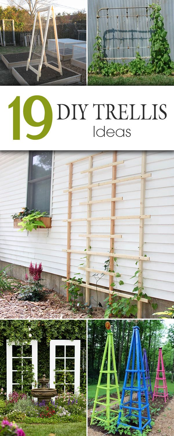 Pinterest Trellis Ideas Part - 21: 21 Easy DIY Garden Trellis U0026 Vertical Growing Structures | Garden  Structures, Pergolas And Rainbows