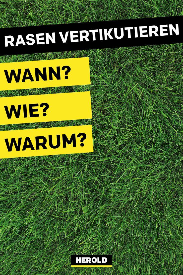 Den Rasen vertikutieren: Wann? Wie? Warum?