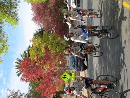 #SuperCycle #hahndorf #bikes #AdelaideHills