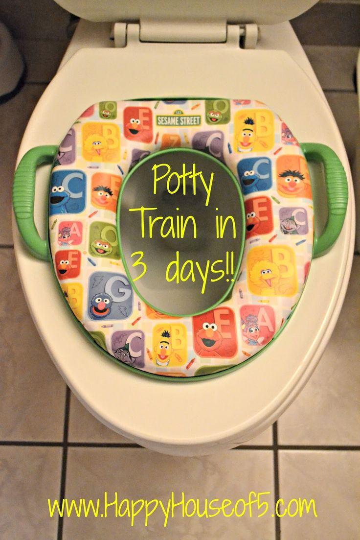 Potty Train in 3 days sure this will be helpful someday