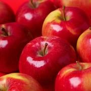 Is Bragg's Raw Apple Cider Vinegar Good for Systemic Candida? | LIVESTRONG.COM