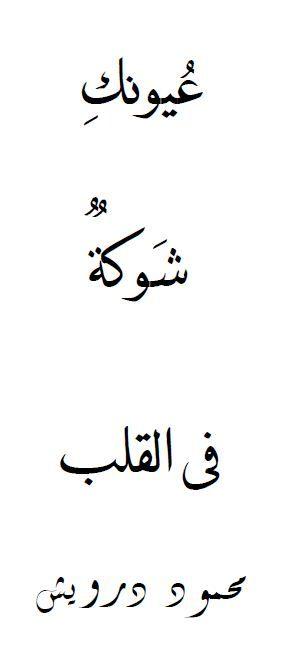 Your eyes pierce into my heart.    -Mahmoud Darwish