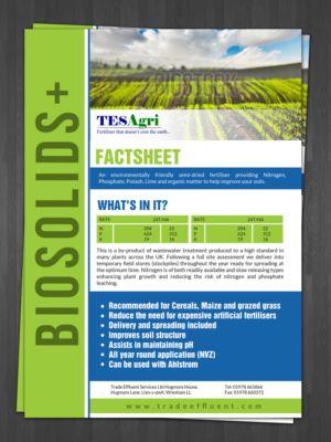 51 Best Fact Sheet Design Images On Pinterest Brochures   Microsoft Word  Fact Sheet Template  Microsoft Word Fact Sheet Template
