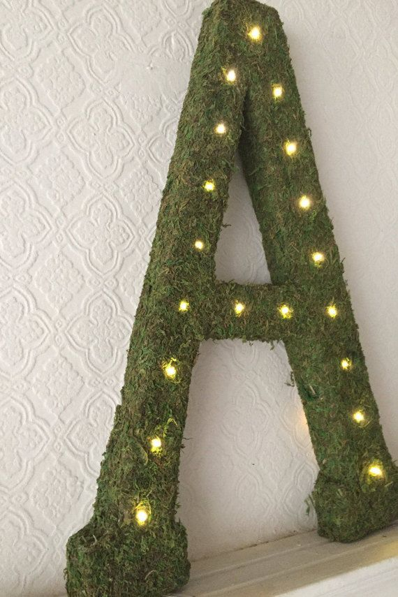 23 Moss Letters with Lights