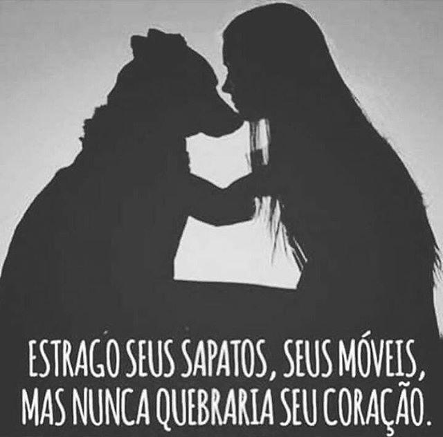 PURA VERDADE! ❤❤❤ #filhode4patas  #amoanimais  #cachorroétudodebom  #cachorro  #amocachorro  #petmeupet