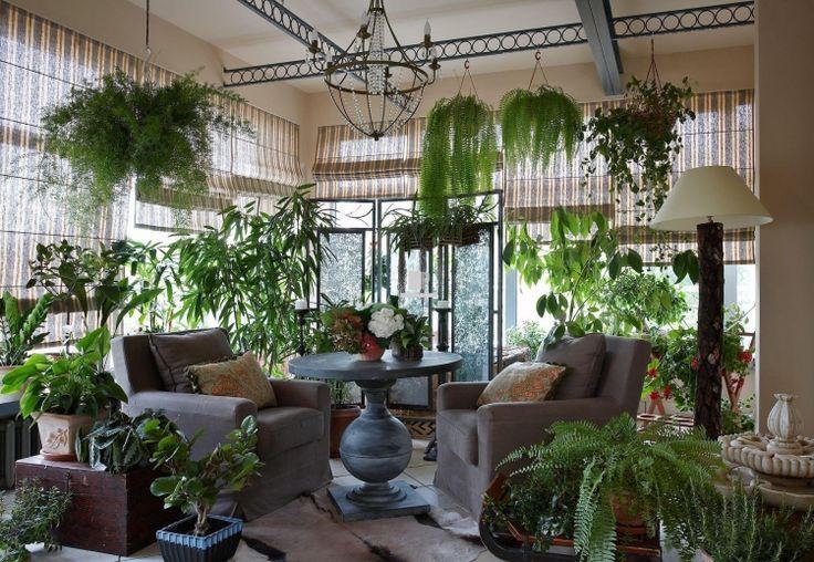Plantes vertes dans le jardin d 39 hiver la maison id e for Catalogue plantes vertes