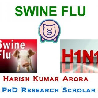 SWINE FLU Harish Kumar Arora PhD Research Scholar   What is swine flu? Swine flu is a respiratory disease of pigs caused by influenza A viruses that cause. http://slidehot.com/resources/recent-advancements-in-swine-flu-treatment.41792/