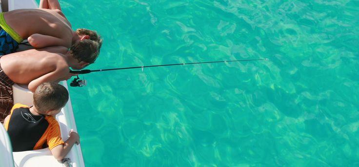 17 best images about st maarten on pinterest beach for St maarten fishing