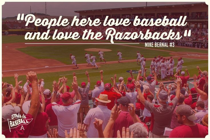 Arkansas Razorback Baseball quote graphic