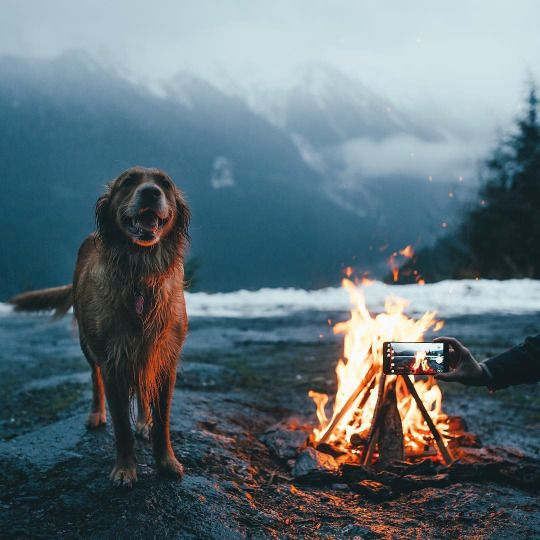 My two favorites. A sweet camping spot and the greatest company you could ask for