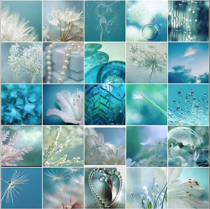 Blue Collage The Blues Pinterest Turquoise Aqua And