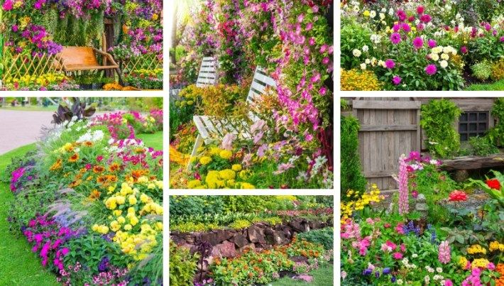 40 Colorful Flower Garden Ideas Color Bursts For Inspiration In 2020 Garden Design Colorful Flower Beds Flower Garden