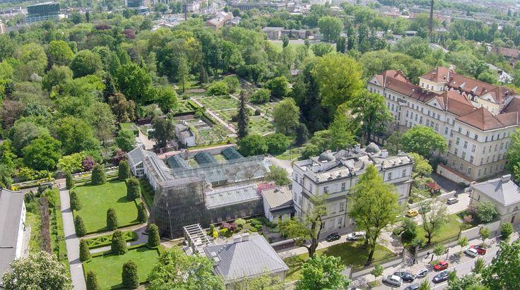 Ogród botaniczny z lotu ptaka [ZDJĘCIA Z DRONA] - Zdjęcie 57341 - LoveKraków.pl