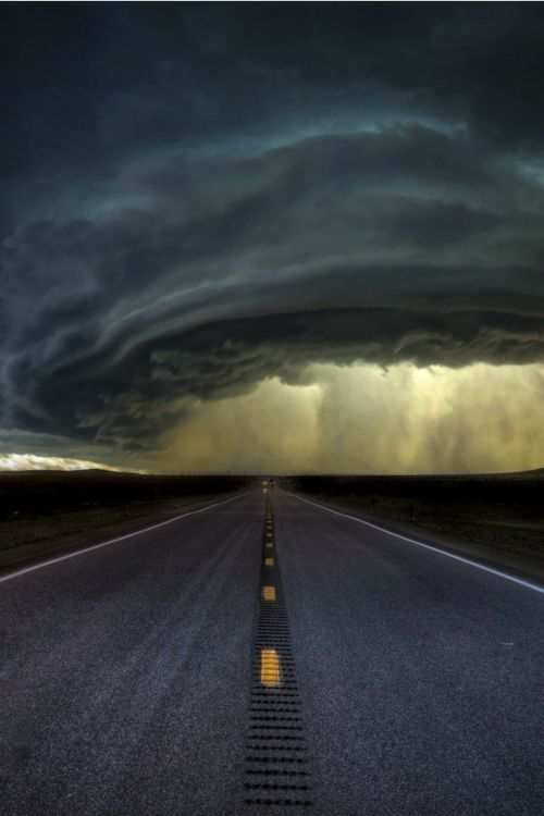 Into The Storm (Jeff McNeill)