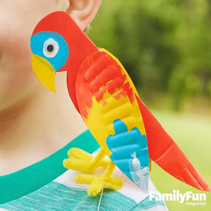 paper plate parrot (pic only)                                                                                                                                                                                 More