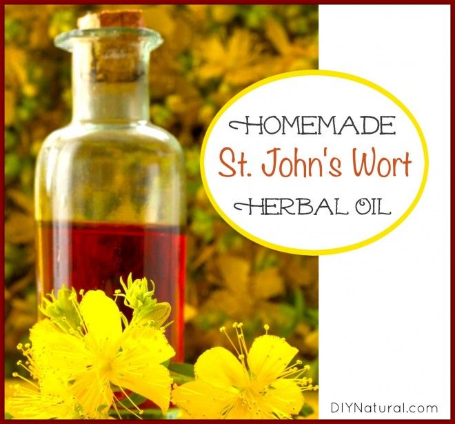 St Johns Wort side effects? Like many herbs it has been cast into suspicion. We consider this, its benefits, and give a homemade St. John's Wort oil recipe.