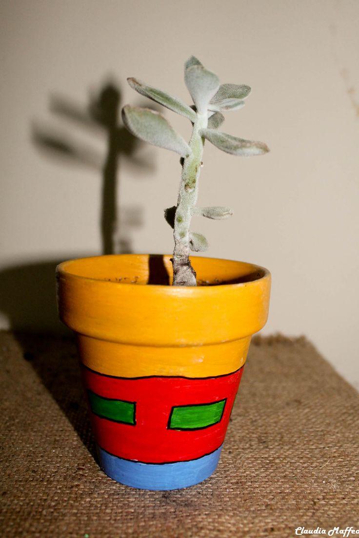 venta de macetas cactus y suculentas
