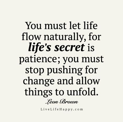 You must let life flow naturally, for life's secret is patience; you must stop pushing for change and allow things to unfold. - Leon Brown