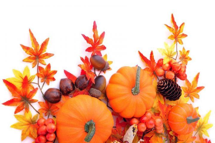 Immagini Halloween: scegli le più belle per gli inviti fai da te