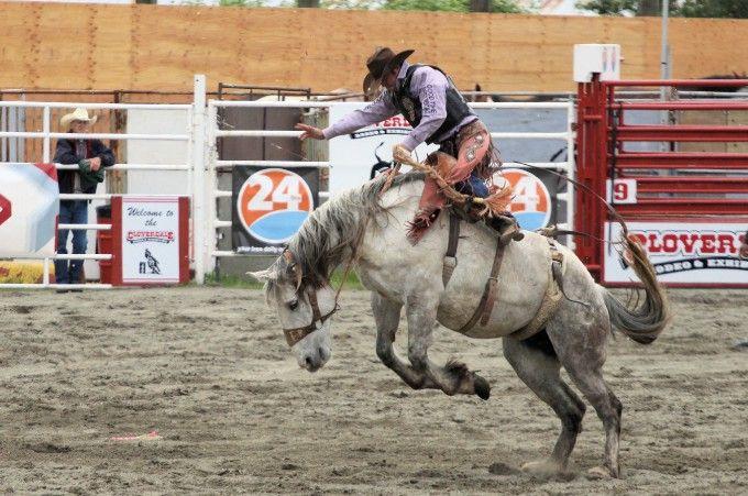 2013 BC - Cloverdale Rodeo IMG_5247.JPG