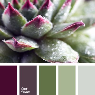 Color Palette #2783                                                                                                                                                                                 More
