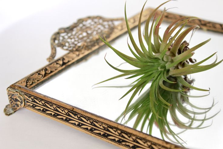 Vintage Small Tray with Handles/ Vintage Mirrored Tray / Vintage Vanity Tray / Vintage Mirrored Vanity Tray /Vintage Brass and Mirrored Tray by VelvetPoppyVintage on Etsy