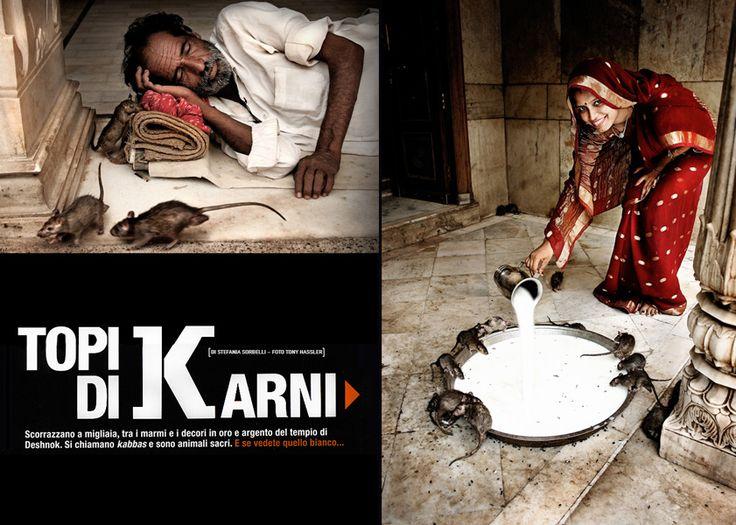 Il tempio dei topi #mumbai #portrait #reportage @reportage @magazine