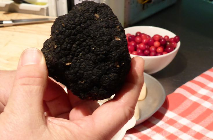 truffes restaurant tanesy gastrolatre nancy