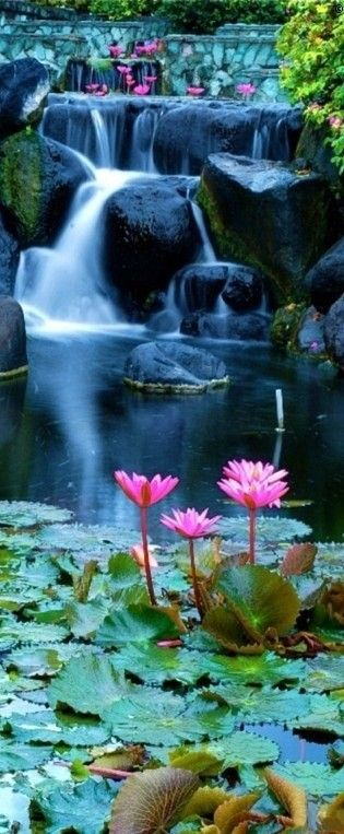 Lotus blossom waterfall in Bali, Indonesia