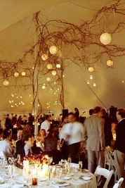 Branches and lanterns to decorate marquee