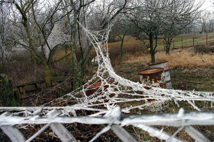 """Kaziale Stavroula """"The Meadow (Livadi) of the ephemeral"""" Artwork in situ (in the field), which remained as a landscape installation to be eventually fully absorbed by nature. Οne year later, winter..."""