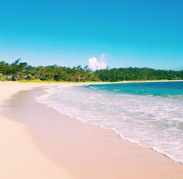 70 Best Aloha Images On Pinterest