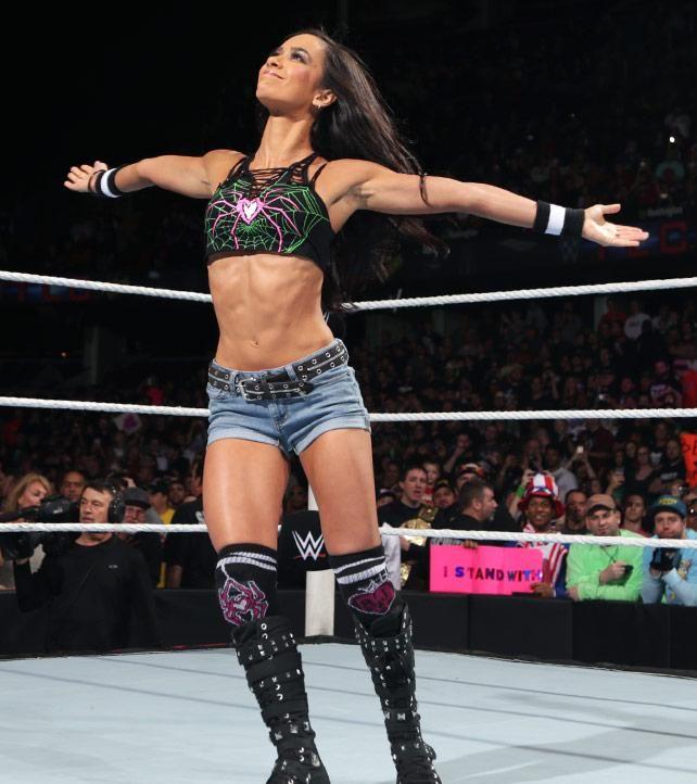 AJ Lee vs. Nikki Bella - Diven-Championship Match: Fotos