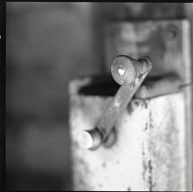 Work of my student with my little help. Taken with Hasselblad on Fomapan 100. Developed in Fomadol LQN. Práce mého kolegy během workshopu s mou menší asistencí. Foceno na film #Foma 100 středoformátovým Hasselbladem. #hasselblad #extensiontube #fomapan #fomadol #analogfotograf #trebic #dof #stillife #nocrop #naturallight