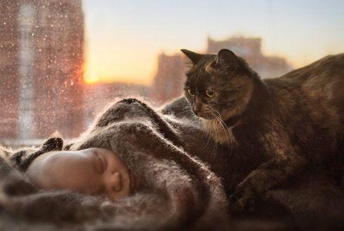 Фото Кошка смотрит на спящего ребенка, фотограф Валентина Хорева